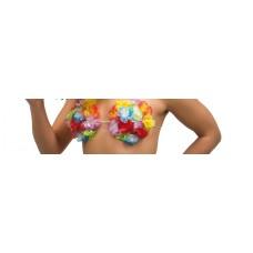 Hawaii BH