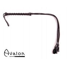 Avalon - HENGEST - Svart Flogger med Lærdusk